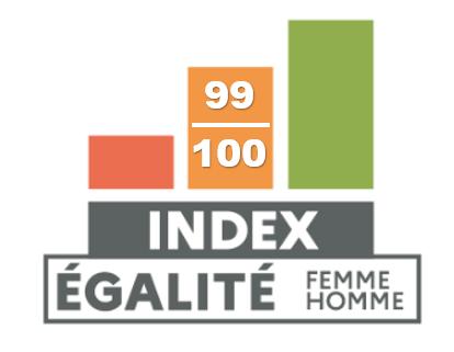 index-egalite-fh-2020